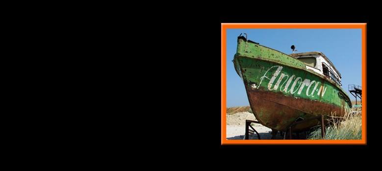 Rūdžių šalinimas nuo laivų ir valčių RUSTYCO
